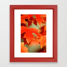 FALL LEAF - ORANGE Framed Art Print