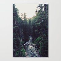Oregon x Rainier Creek Canvas Print