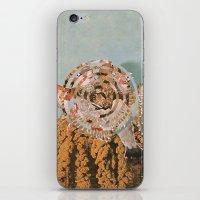 Habitat IV iPhone & iPod Skin