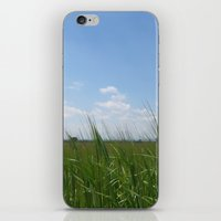 Earth and Sky iPhone & iPod Skin