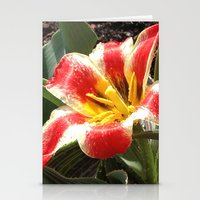 Tulips, Red And Yellow S… Stationery Cards