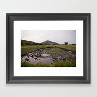 Rice paddy Framed Art Print