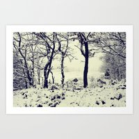 Snowy Trees Art Print