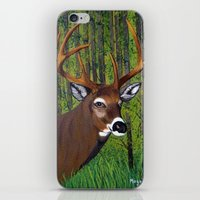 Buck By The Forest iPhone & iPod Skin