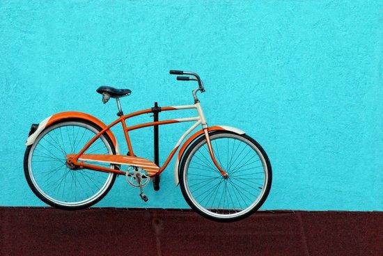 Oak Cliff Bicycle Art Print