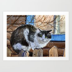 Willage Cat sitting on the fence Art Print