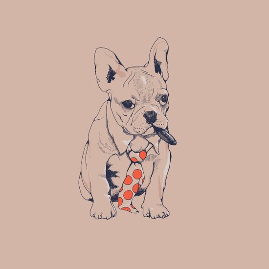 FRENCH BULLDOG BOSS Canvas Print