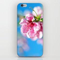 Float... iPhone & iPod Skin