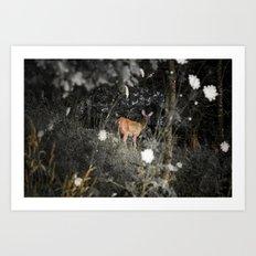Didi the Deer Art Print