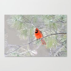 Cardinal After The Ice S… Canvas Print