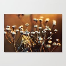 Skagit Winter Life Canvas Print