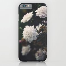 The Most Beautiful View Slim Case iPhone 6s