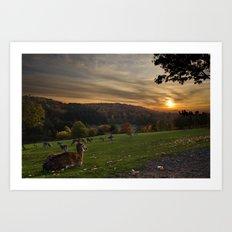 Serenity at Freisen Wildpark Art Print