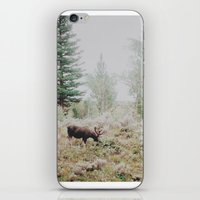 Moose 1 iPhone & iPod Skin