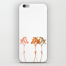Sensation d'automne iPhone & iPod Skin