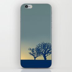 01 - Landscape iPhone & iPod Skin