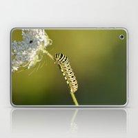 Catapillar On Queen Anns… Laptop & iPad Skin