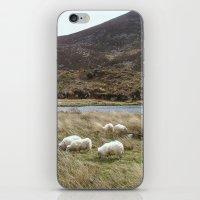 Irish Countryside iPhone & iPod Skin
