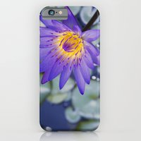iPhone & iPod Case featuring Painted Islands of Summer Lilies - The Lotus Blossom by Sharon Mau