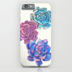 Vibrant Succulents  Slim Case iPhone 6s