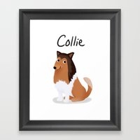 Collie - Cute Dog Series Framed Art Print