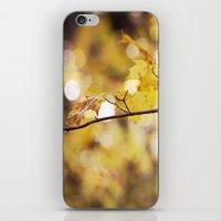 Amber Droplets iPhone & iPod Skin