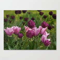 Shades of Burgundy Canvas Print