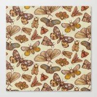 Moth Pattern Canvas Print