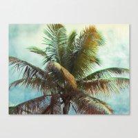 Palm, Tropical Canvas Print