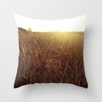 Sweet Sunset Throw Pillow