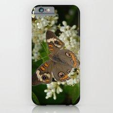 Buckeye iPhone 6 Slim Case