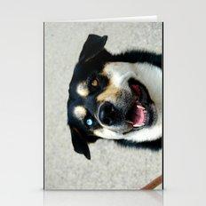 One Blue Eye Husky Dog Stationery Cards