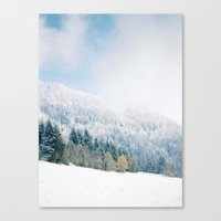 White Forest - French Al… Canvas Print