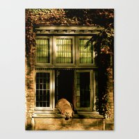 Nap in the Sun Canvas Print
