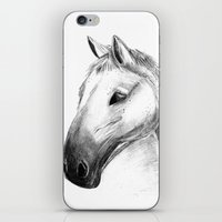 Horse Tales iPhone & iPod Skin