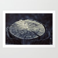 Wooden Stump Art Print