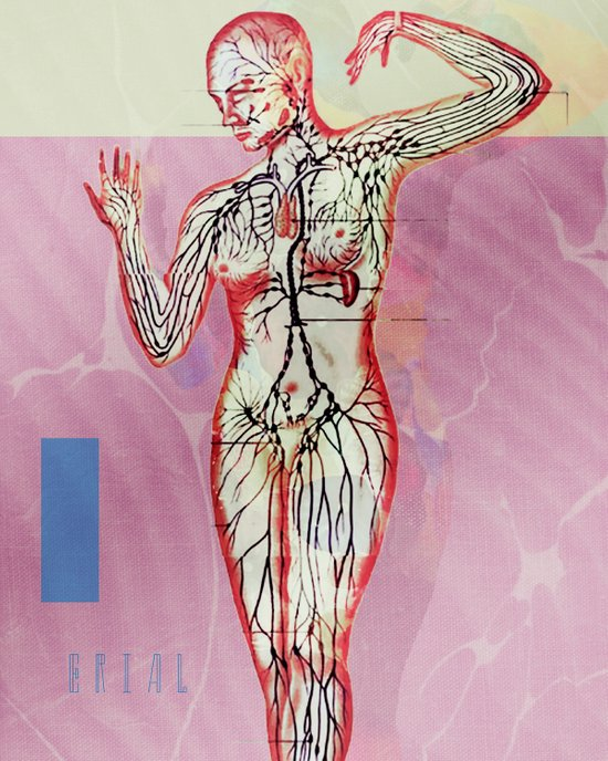 Arterial Art Print
