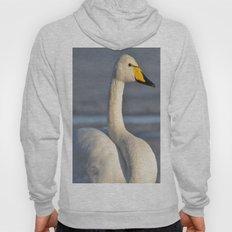 Whooper Swan Hoody