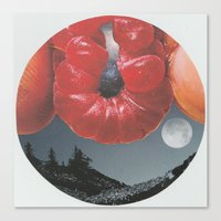 Soul to Squeeze Canvas Print