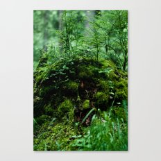 Sprite Stump Canvas Print