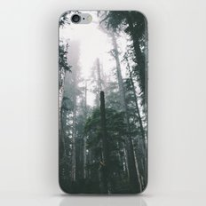 Forest XVIII iPhone & iPod Skin
