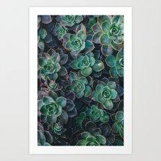 Plants No. 1 Art Print