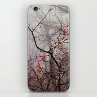 Forest Of Red iPhone & iPod Skin