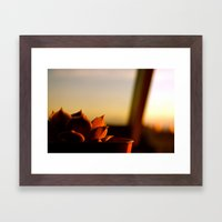 Painted by the Sun Framed Art Print