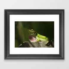 Mating Dance Framed Art Print