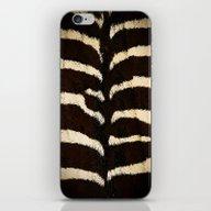 iPhone & iPod Skin featuring Zebra by Päivi Vikström