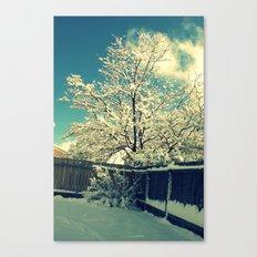 New Mexico Snow Scene  Canvas Print