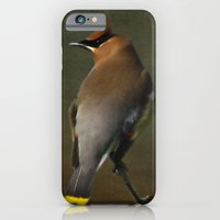 iPhone & iPod Case featuring Cedar Waxwing by TaLins