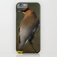 Cedar Waxwing iPhone 6 Slim Case