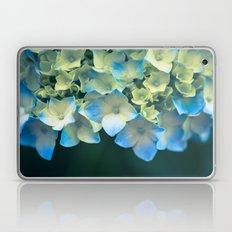 Peek -A- Blue Laptop & iPad Skin